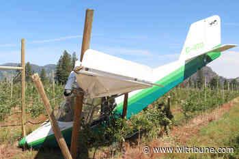 Plane crash lands into Grand Forks orchard, pilot injured – Williams Lake Tribune - Williams Lake Tribune