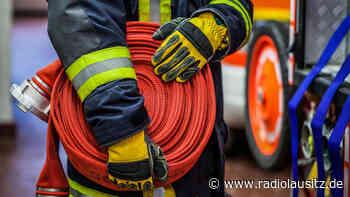 Wachsamer Hund meldet Feuer in Zittau - Radio Lausitz
