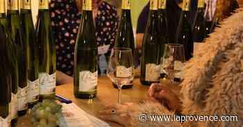 Arles : saveur particulière pour le 20e Salon du vin et des gourmets - La Provence