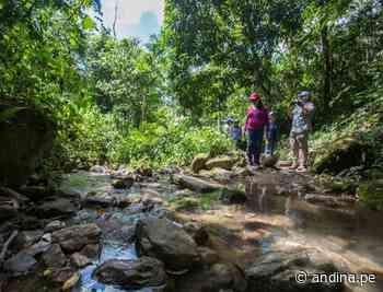 San Martín apuesta por la recuperación de bosques para proteger sus fuentes de agua - Agencia Andina