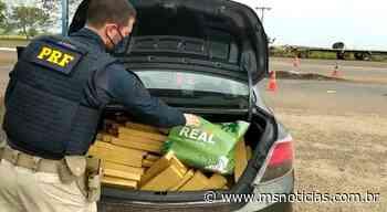 PRF apreende 469,9 Kg de maconha em Ivinhema (MS) - MS Notícias