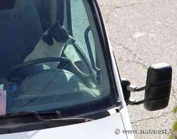 Royan : la police municipale intervient pour sauver des chiens enfermés dans des voitures - Sud Ouest