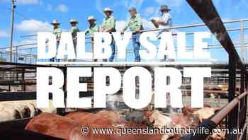 Yearling steers under 200kg top at 678c, average 616c at Dalby - Queensland Country Life