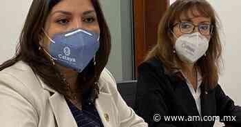 Celaya: Mejora calificación financiera de la ciudad pese a pandemia - Periódico AM