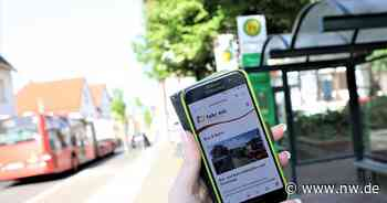 Dreimal Nein zu Grünen-Anträgen im Warburg Rat - Neue Westfälische