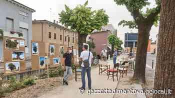 Medole, un paese e il suo viale alberato: festa di ricordi e gusti creativi - La Gazzetta di Mantova