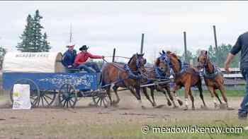 Chuckwagon drivers set to ride for Meadow Lake minor hockey - meadowlakeNOW