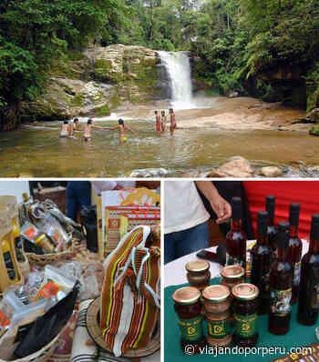 Festival gastronómico, café y concursos en Semana Turística 2021 en Pangoa - Viajando por Perú