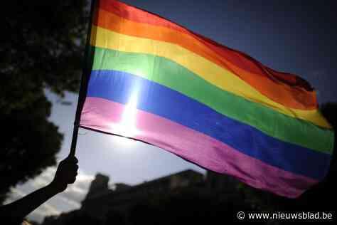 'De Ring' en Regenbooghuis steken LGBTQ-gemeenschap in Hongarije hart onder de riem
