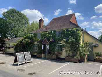 Dog friendly, adults only and gluten free New Forest pub - Daily Echo
