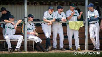 Baseball Ulm: IT sure Falcons hoffen auf den ersten Sieg - SWP