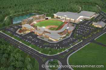 Council green lights metro ball stadium with ASP approval - Spruce Grove Examiner