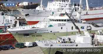 Bruselas rebaja los aranceles para 75.000 toneladas de calamar de las Falklands - MercoPress