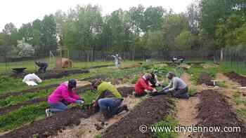Harvest Kenora wins 10K in Tbaytel for Good Community Fund - DrydenNow.com