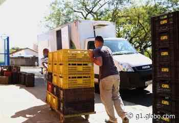 Banco de Alimentos de Uberaba faz arrecadação para famílias em situação de vulnerabilidade - G1