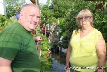 """Pasgetrouwden Henk en Christa gaan op week tijd van hemel naar hel: """"Huwelijksreis uitgesteld om tuin te verzorgen, nu staat hier halve meter water"""" - Het Nieuwsblad"""