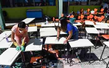 Regreso a aulas, hasta el próximo ciclo escolar: Colegio de Médicos - El Sol de Zamora