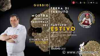 Il tartufo estivo ti aspetta a Gubbio - RomaToday