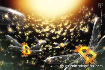 ¿Poniéndolo todo sobre la mesa? MicroStrategy redobla su apuesta por Bitcoin - Cointelegraph en Español (Noticias sobre Bitcoin, Blockchain y el futuro del dinero)