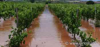 El granizo y las tormentas regresan a La Rioja - La Rioja