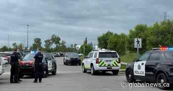 5 arrested after weekend robberies; K9 bites suspect, bystander during arrest