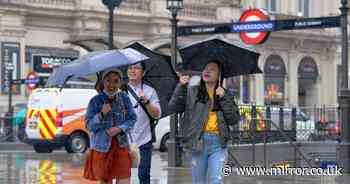 Washout Father's Day as inches of rain fall and summer is 'placed on pause'