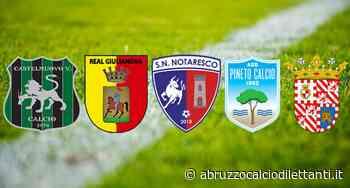 Serie D/F, ultima giornata: il Pineto termina al 3° posto - Abruzzo Calcio Dilettanti