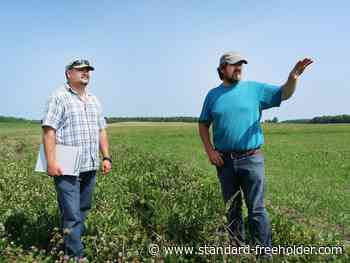 New RRCA Agri-Action Advisory Service looking to help local farmers - Standard Freeholder