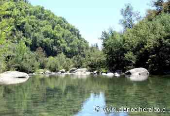 Se publicó en el Diario Oficial creación del Santuario de la Naturaleza Los Maitenes de Río Claro - Diario El Heraldo Linares