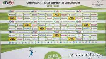 NOTIZIA TC - Legnago, Zanoli rientra al Napoli. Reggina in pressing - Tutto Lega Pro