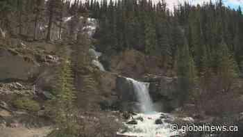 Canada-US border uncertainty concerning for Jasper National Park   Watch News Videos Online - Globalnews.ca