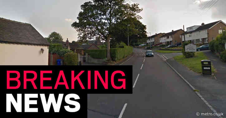 Girl, 6, dies after being hit by car while walking with her father