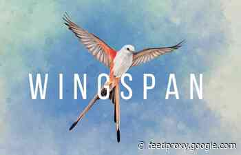 Wingspan award-winning boardgame now digital on Xbox