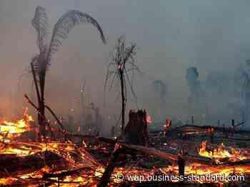 World Coronavirus Dispatch: Amazon fires could further worsen Brazil cases - Business Standard
