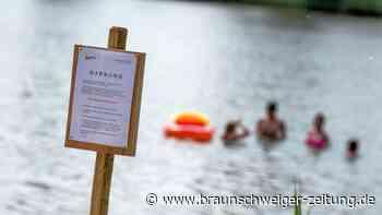 Blaualgen trüben Badespaß in Niedersachsen - keine Badeverbote