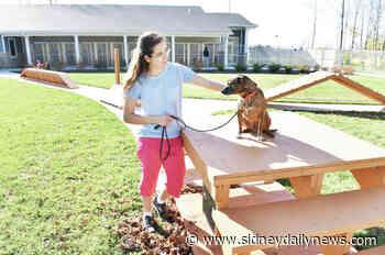 Girl Scout earns Gold Award - sidneydailynews.com