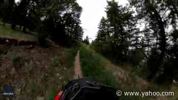 'I Got Scared': Bear Charges at Biker on British Columbia Trail - Yahoo Lifestyle