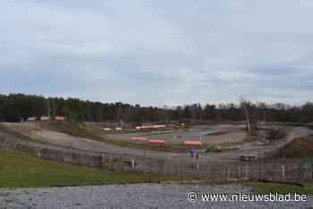 Vlaams minister Demir ziet verschillende oplossingspistes voor Hondapark - Het Nieuwsblad