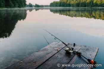 You can take dad fishing for free this weekend - GuelphToday