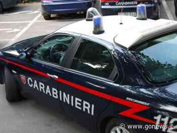 Aggressione e tentata rapina a un negoziante, 4 giovani arrestati a Pontassieve - gonews