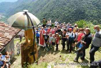 Bagolino - Nuova vita per il pino storico di San Gervasio - Valle Sabbia News