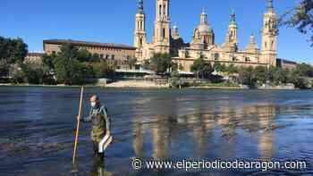 Crecen las consultas por picaduras de mosca negra y de mosquito tigre - El Periódico de Aragón