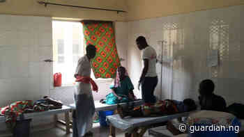 Cholera death toll rises to 42 in Bauchi, 2874 persons infected - Guardian
