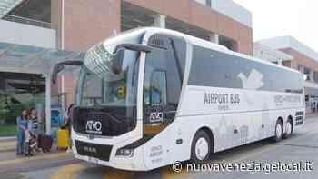 Torna il bus per il mare dagli aeroporti di Venezia e Treviso - La Nuova Venezia