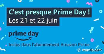 Prime Day 2021 : Tout savoir sur l'événement pour faire plaisir à vos chats et chiens - Wamiz