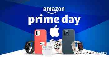 Prime Day Apple Watch deals: Save up to $120 on Series 6, up to $39 on Apple Watch SE right now     - CNET