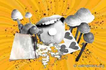 ¿Se legalizarán los psicodélicos en California? - CalMatters