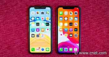 iPhone 11 vs. iPhone XR: Which is the best iPhone?     - CNET