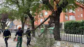 """La """"tormenta del siglo"""" en Madrid: ayer fue el día más lluvioso en la capital en junio desde 1920 - EL PAÍS"""
