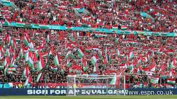 UEFA probes discrimination at Hungary matches
